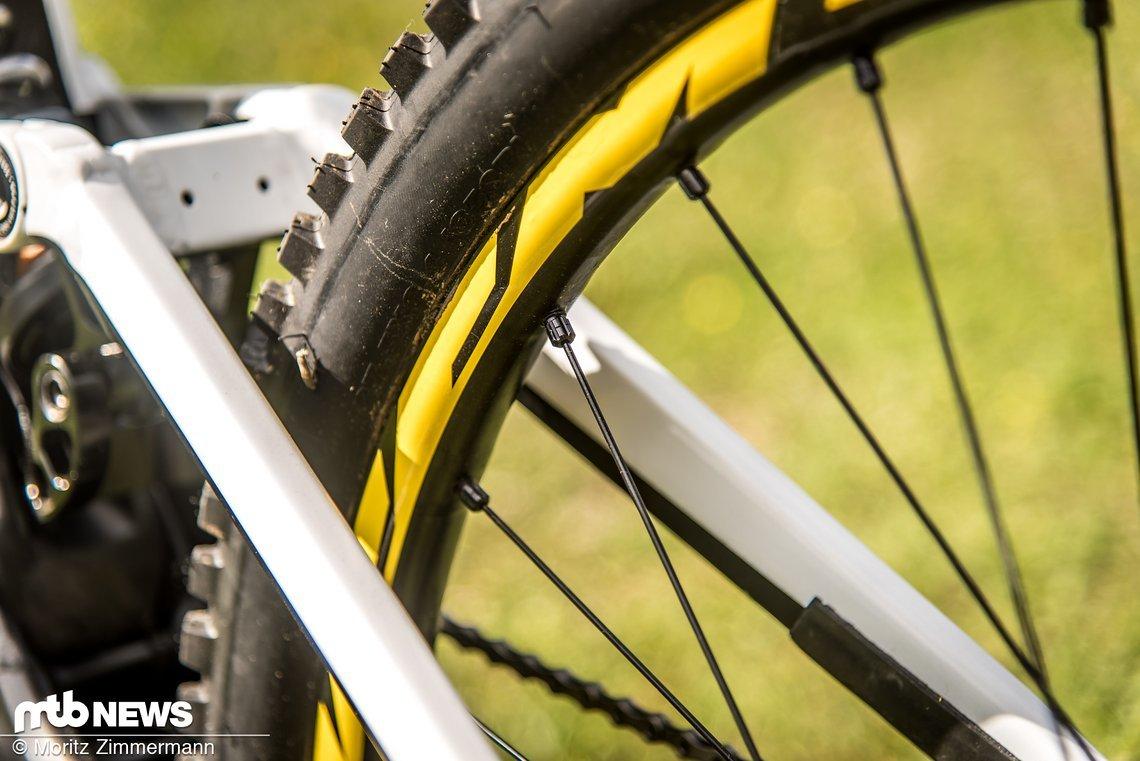 Ein interessantes Detail: An den Mavic Deemax-Laufrädern bevorzugt Troy runde Speichen, weil diese leiser sind