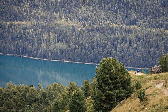Tagesabschluss auf dem Corviglia Flow Trail - für das Teilnehmerfeld geht es ein letztes Mal hinab nach Chantarella