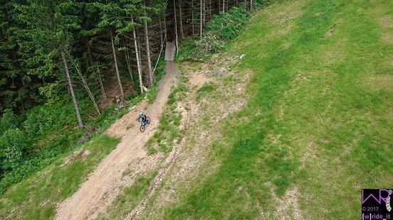 Ausfahrt aus Wald auf Stage 3
