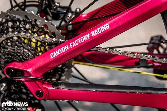 bike-check-ines-thoma-canyon-strive-cf-7757